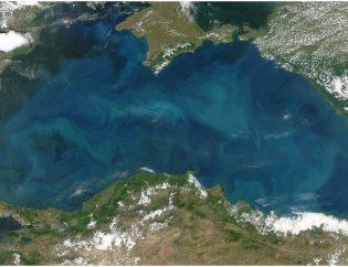 Черно море си има загадъчно чудовище с остри нокти и страховити челюсти